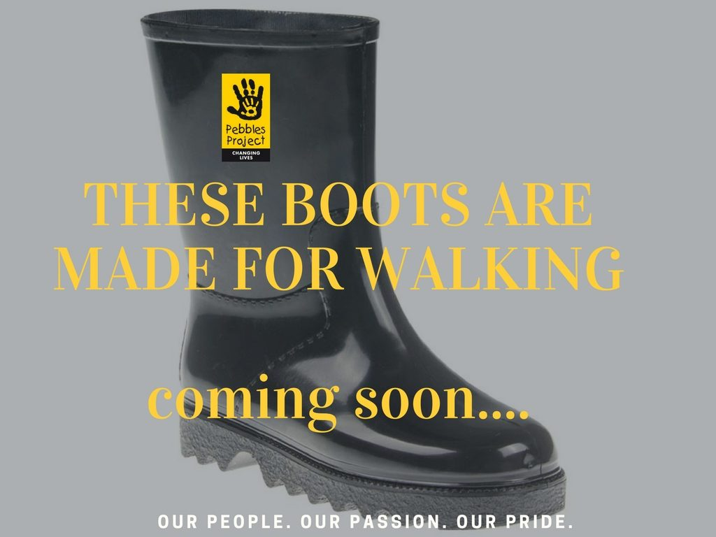Home page boots